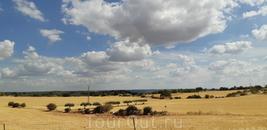 Типичный пейзаж Кастилии Ла Манчи - поля, еще поля и небо. Между Орче и Гвадалахарой он ничем практически не отличается от того, что я видела из окна поезда ...