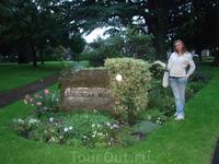 Stillorgan - район Дублина, где я жила