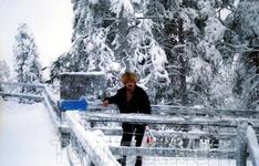 Смотровой мост в зоопарке для наблюдения за зверями