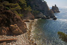 Берег моря. Вид из ботанического сада