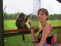 с обезьянками можно провести огромное количество времени))) главное следить, чтобы они на голову не написали!