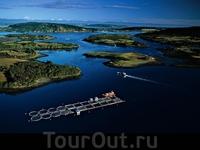 Лососевая ферма близ Mechuque на островах Chauques, Чили Экологически чистые холодные воды островов Chauques хорошо подходят для разведения лосося. Этот ...