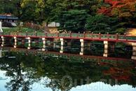 Красивый мост.