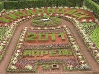 любимый цветочный календарь
