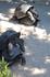 Вольер с черепахами в ботаническом саду. Некоторым из них в районе 150 лет. Черепахи постоянно спариваются, издавая при этом громкие стоны