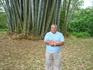 Я большой, а бамбук больше
