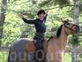 Ипотерапия - или катание на лошади  для избавления от стрессов от www.travelfilm.ru