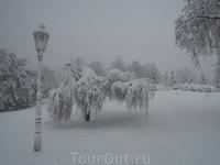 16.12.2011г  promenade   в снегопад