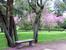 После десятилетий относительного пренебрежения в 1974 г. парк был приобретен городом Мадридом, а в 1985 г. объявлен культурным памятником.
