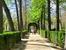 Эта аллея ведет в одно из самых красивых и запомнившихся мне мест парка.