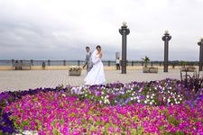 Набережная Анапы в цветах как нельзя лучше украшает нашу прогулку осенним днем сентября