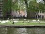 Лебединый   островок,один из тех,что видели,совершая прогулку по каналам Брюгге.