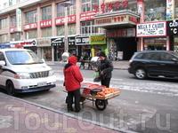 свет, мандарины,полиция,осел,магазины