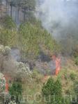 Когда ехали по канатной дороге прямо под нами сильно горел лес