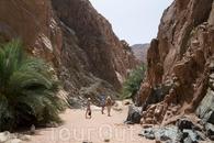 Каньон. Удивительно, но в этом каньоне посреди пустыни довольно много зелени и есть небольшой горный ручеек.