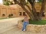 Кулер во дворе у шейха