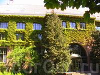 Ботанический сад Осло,следующий пункт в нашем списке.
