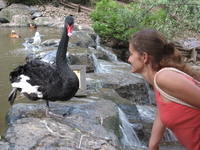 Китай, Далянь. в парке птиц