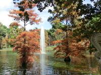 Даже и не знаю, что в этом месте красивее - дворец или окружающий его пруд, в котором прямо из воды растут кипарисы.