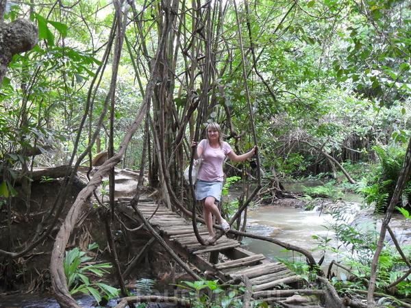 Национальный парк в джунглях