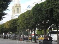 г. Тунис проспект 7 ноября 7