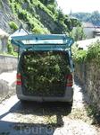 Так в Австрии перевозят обрезанные ветки