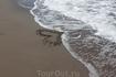 Рисунки на песке.......Родос мы полюбили тебя!!!