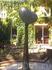 """Трёхметровое """"Дерево любви"""" в городском саду на Дерибасовской."""
