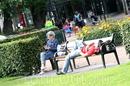 """Норвежцы """"ловят"""" каждый солнечный лучик, по статистике 300 дней в году в Бергене нет солнца"""