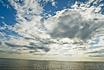 Белое море  forever