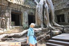 Храмы Ангкора во власти джунглей.