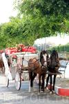 можно устроить романтику - прокатиться в карете по улицам города...