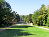 Этот вид на фонтан Ракушки был задуман архитектором парка как один из главных привлекательных видов парка.