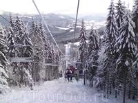 Сквозь заснеженный смерековый лес на вершину Чёрная Клева.           http://bukovel.com/