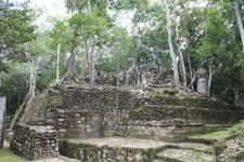 Баномпак, джунгли пожирают города и цивилизации
