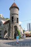 Вируские ворота, построенные в XIV веке, сохранились до нашего времени лишь частично