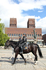 конная полиция в Осло