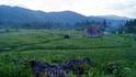 Прогулка по приюту Приют находится на высоте около 1500м