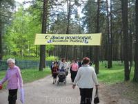 Вход в парк с вековыми соснами