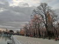 Солнце все выше, оно оставляет золотые блики на верхушках деревьев и парк постепенно оживает.