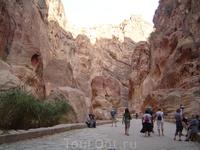 Иордания.Дорога к Розовому городу. Петра