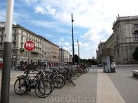 Вена. У  стен Музейного квартала