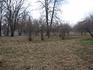 Яблоневый сад справа, в основном за кадром.