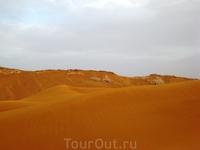 Обычно тускло-желтые пески пустыни переливались невероятными оттенками рыжины, а подсыхающие участки наливались желтизной