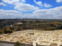 Масличная гора в Иерусалиме - Елео́нская, или Масли́чная гора - возвышенность, тянущаяся с севера на юг против восточной стены Старого города Иерусалима, по восточную сторону Кедронской долины. Издрев