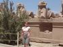 аллея баранов, ведущая к Карнакскому храму. Египет, Луксор