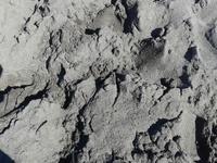 Черный песок,пляж Арена