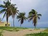 Все о Кубе