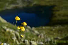 Горное озеро, Архыз