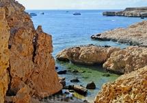 Коралловые поля в заповеднике Рас Мохамед.